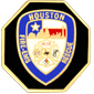HOUSTON TEXAS FIRE DEPARTMENT