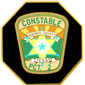 HARRIS COUNTY TEXAS CONSTABLE PCT 2