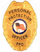 PROTECT AND SERVE FLAG GOLD