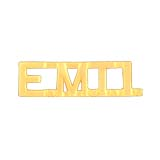 METAL LETTERING E.M.T.1. - GOLD
