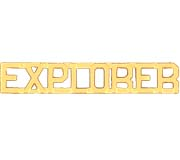 METAL LETTERING EXPLORER - GOLD