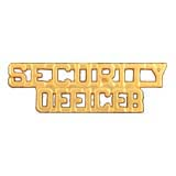 METAL LETTERING SECURITY OFFICER - GOLD