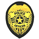 EAGLE W/ RAYS - GOLD ON BLACK - POLICE OFFICER