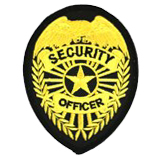 EAGLE W/ RAYS - GOLD ON BLACK - SECURITY OFFICER
