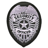 EAGLE W/ RAYS - SILVER ON BLACK - SECURITY OFFICER