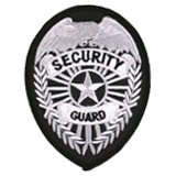 EAGLE W/ RAYS - SILVER/BLACK - SECURITY GUARD