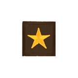 CHIEF STAR GOLD AND BROWN